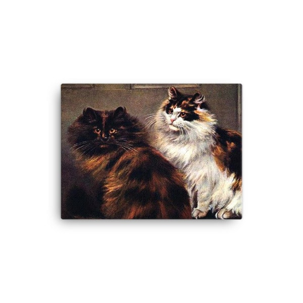 Tortoiseshell Persian cats, after a painting by William Luker (1862-1934) 12×16