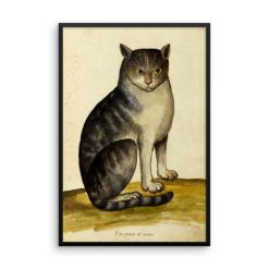 Ulisse Aldrovandi: Seated Cat, 16th Century, Framed Cat Art Poster