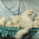 Carl Kahler (1855-1906) Family Portrait, The Great Cat Store, Cat Art Prints-Posters Angora-White Cats