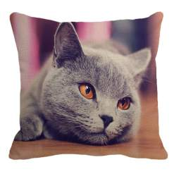 Cute British Shorthair Cat Decorative Linen Pillow Cover