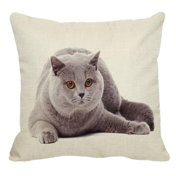Cute British Shorthair Cat Decorative Linen Pillow Cover