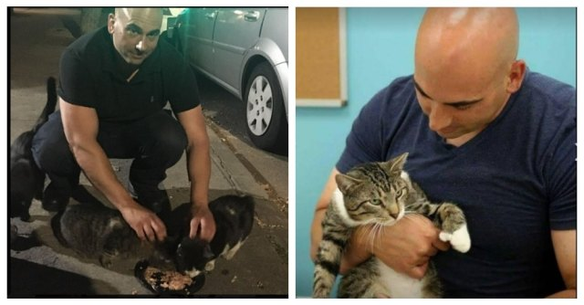 Paul Santell feeding kittens