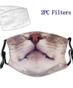 Tabby Cat Face Mask