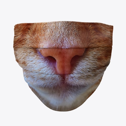 Orange Tabby Cat Face Mask