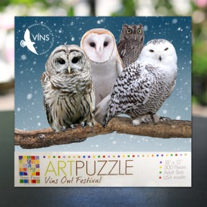 Owl Festival Puzzle