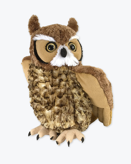 CK-Great-Horned-Owl-2