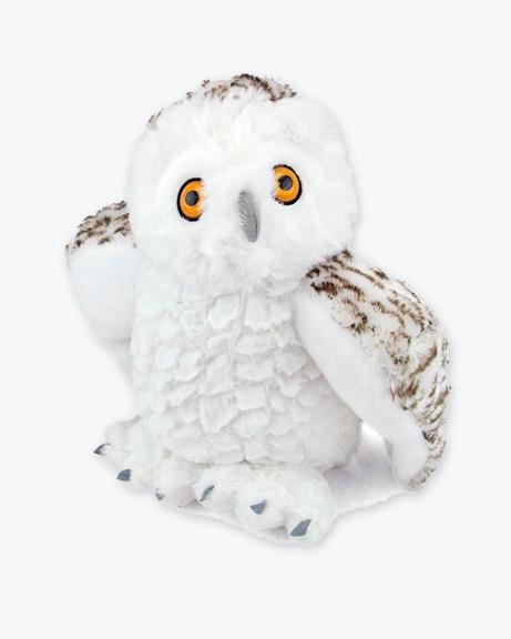 CK-Snowy-Owl