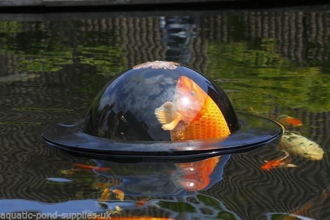 Floating Aquarium Pond