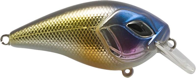River Bluefish