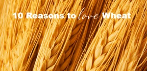 10 Reasons Why You Should LOVE Whole Wheat!