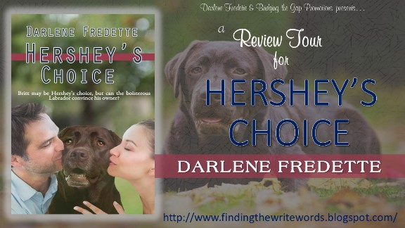 Hershey's Choice Review banner