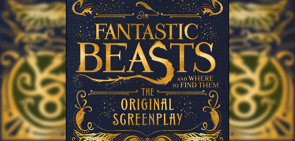 FANTASTIC BEASTS AND WHERE TO FIND THEM by J K Rowling...https://storgy.com/2016/11/25/book-review-fantastic-beasts-and-where-to-find-them-the-original-screenplay/