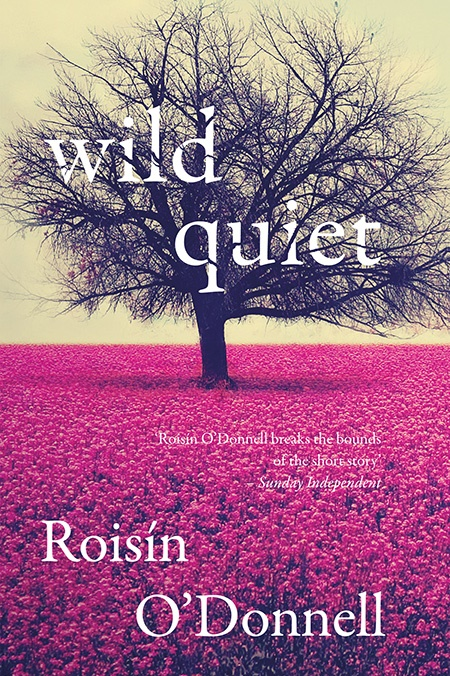 WILD QUIET by Roisin O'Donnell...https://storgy.com/2017/01/07/book-review-wild-quiet-by-roisin-odonnell/