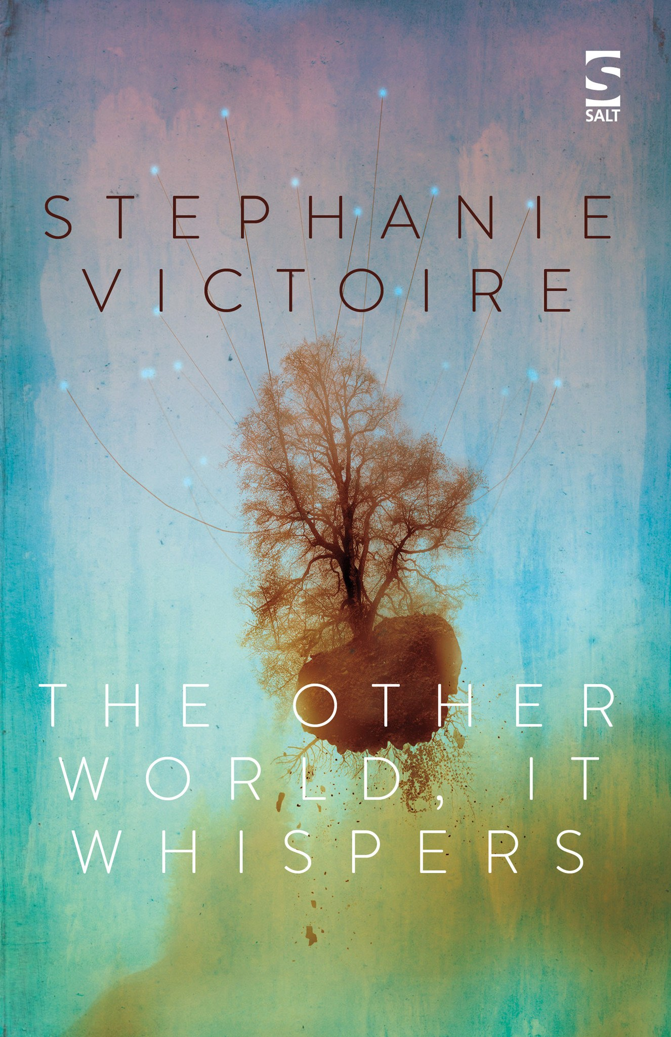 THE OTHER WORLD, IT WHISPERS....https://storgy.com/2017/02/18/book-review-the-other-world-it-whispers-by-stephanie-victoire/