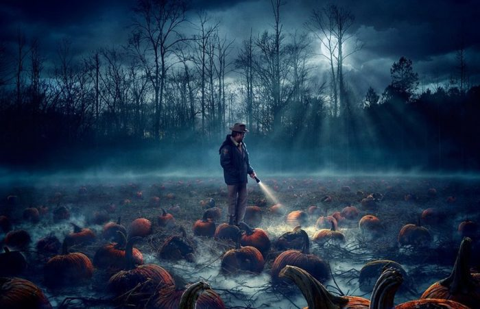 stranger-things-poster-1-crop-700x451