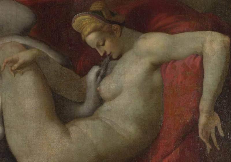 da Michelangelo, Leda e il cigno, particolare