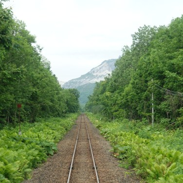 Train track through forest towards a volcano