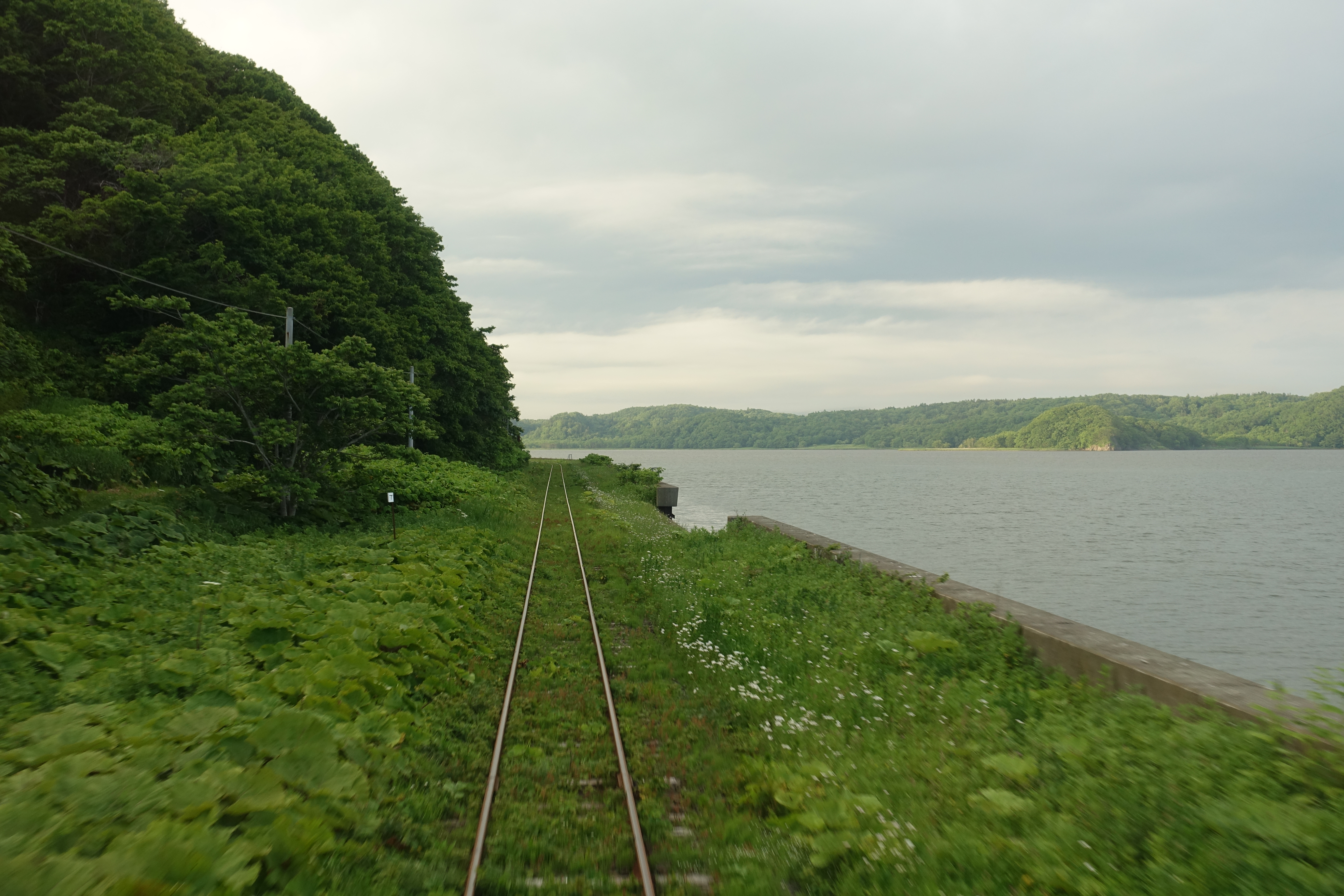 Tracks beside a lake