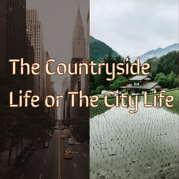 The Countryside Life or The City Life: A Matter of Picking Which Poison