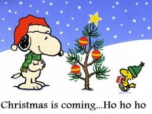 Run up to Christmas