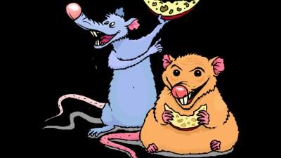 Urban Rat and Village Rat Panchatantra Story in English