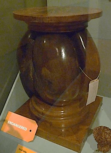 coco-de-mer-stoool