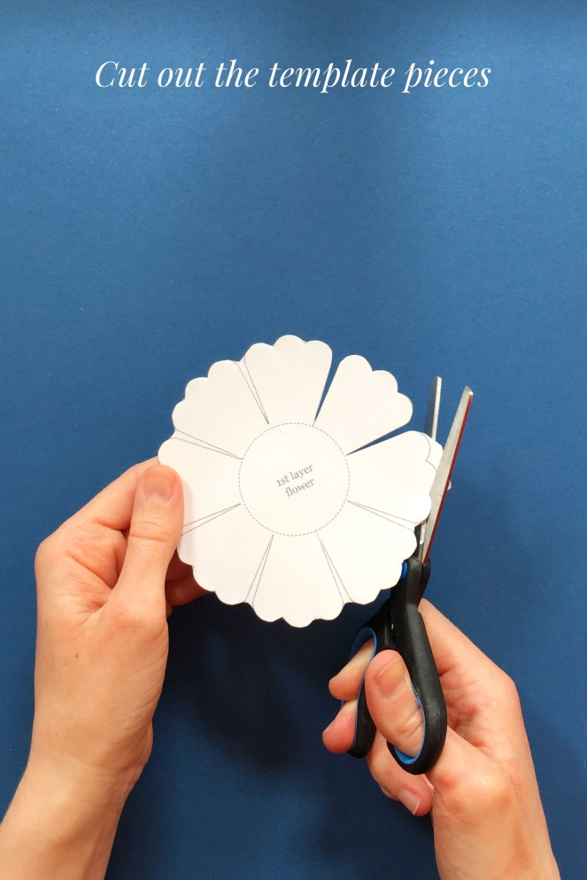 Cutting paper flower template petal piece.