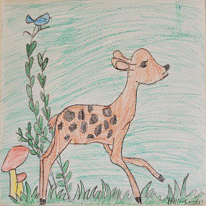 Bambi A Life in the Woods