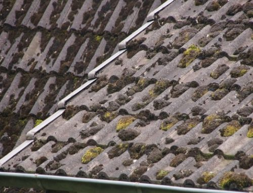 Allen TX Home Tips : How Often Should I Have My Roof Inspected?