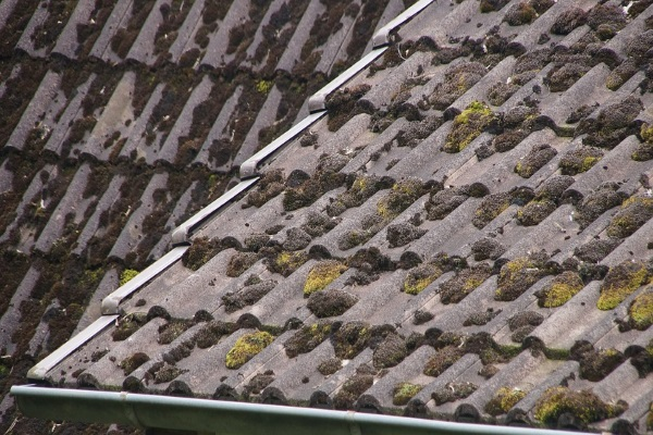 how often should I have my roof inspected