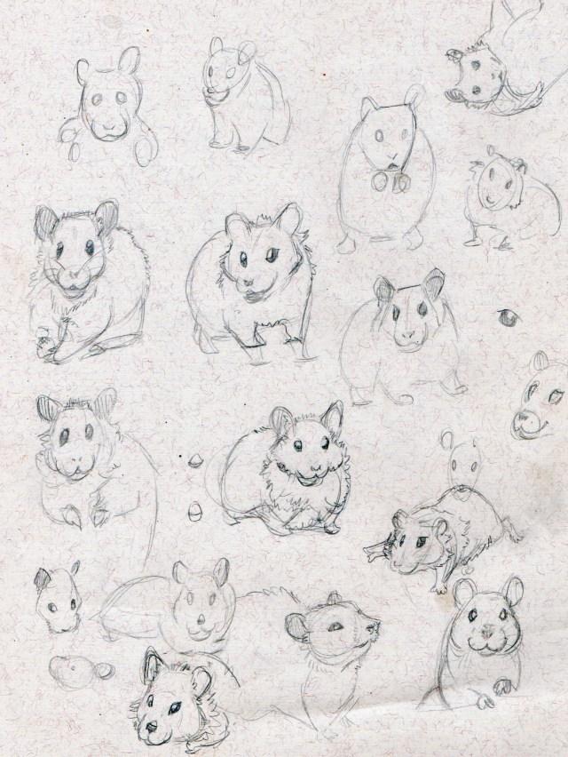 hamstergesture1