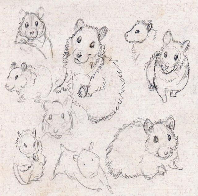 hamstergestures2