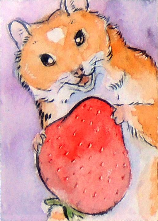 hamsterstrawberry