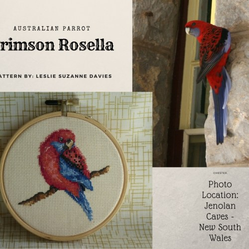 Crimson Rosella Cross Stitch