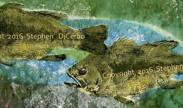 Largemouth Bass Pair 2
