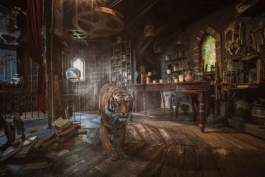 medieval backgrounds tiger education middle alsop karen wallpapertag demo