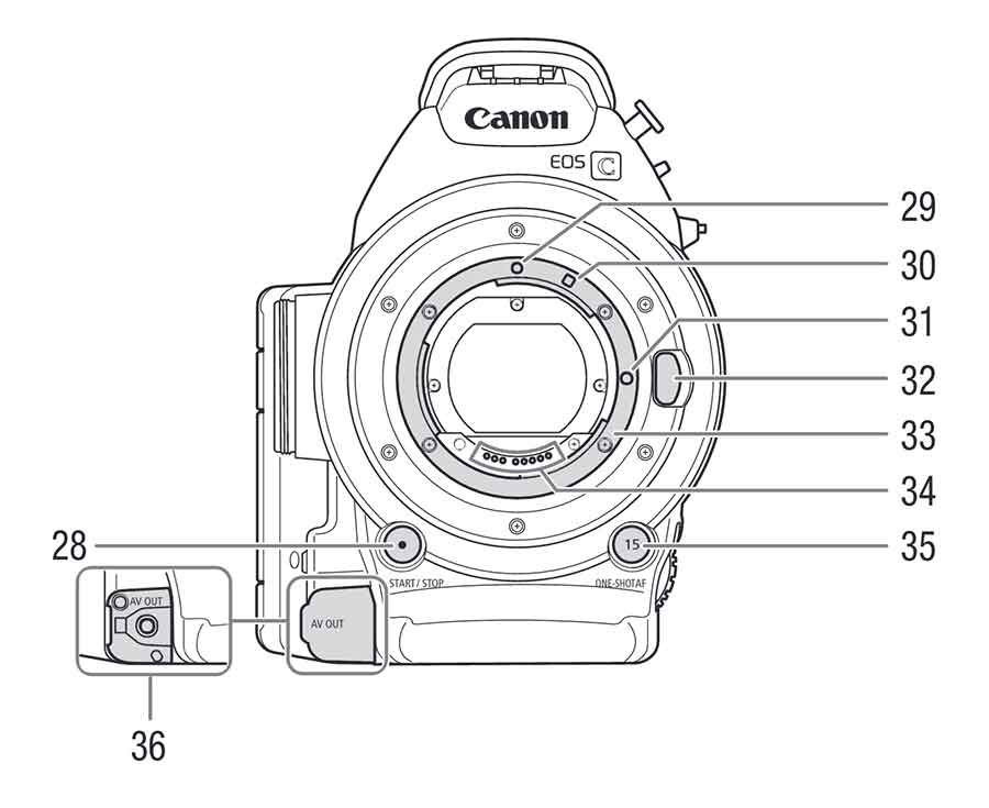 MANUAL: Canon EOS C100
