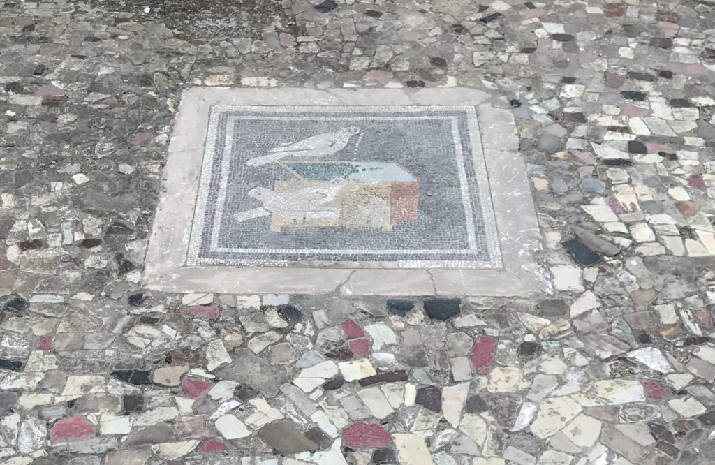 One of the many mosaics and colored marble paths in House of Faun.
