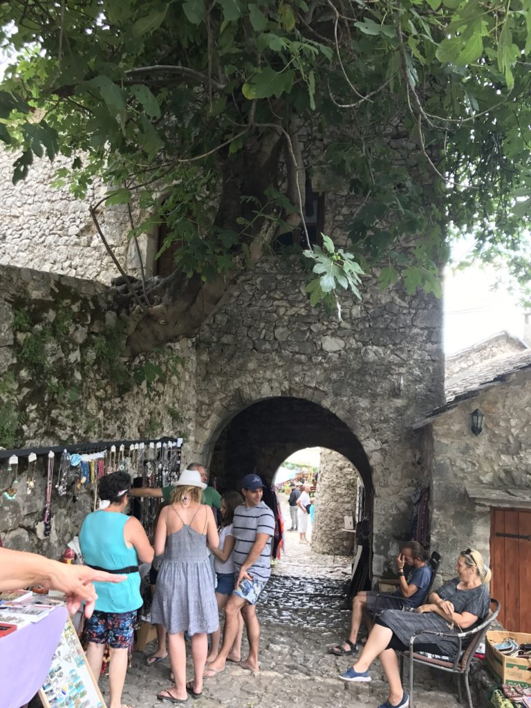 All over the Balkans, people were happy to see us Indians. This little village was no exception. These friendly vendors, sitting under fig trees, even tried to talk in Hindi.