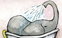 Storybird - Shop for Elephant Bath
