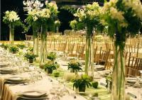 Chapter Nine: Encounters with Caterers | Storybook Wedding