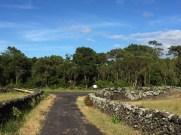 Exploring Pico by bike June '16