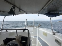 Out to sea