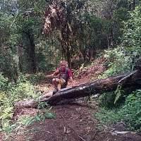 Berputar-putar Di Gunung Lingkung