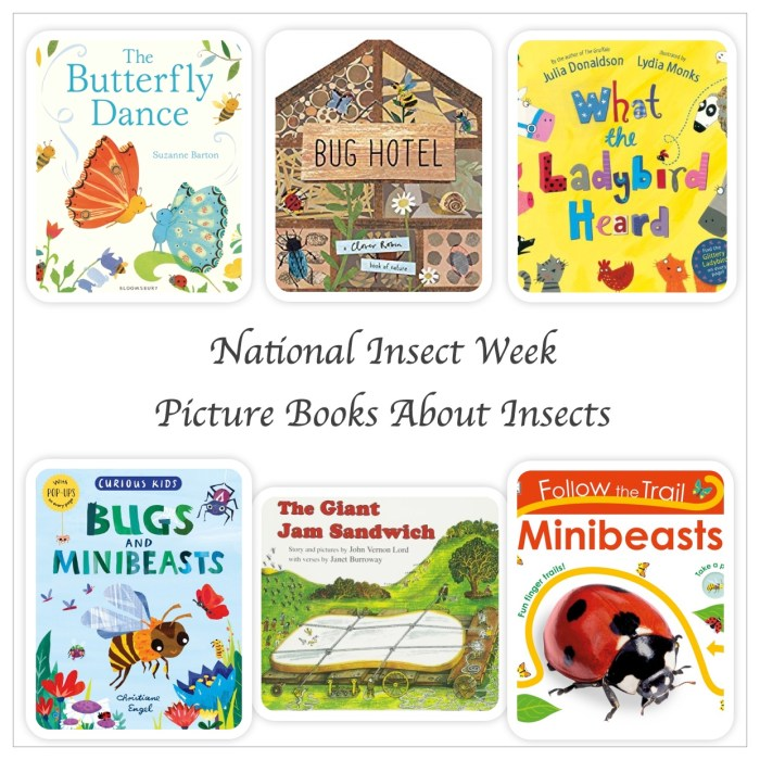 Picture Books About Insects - Story Snug