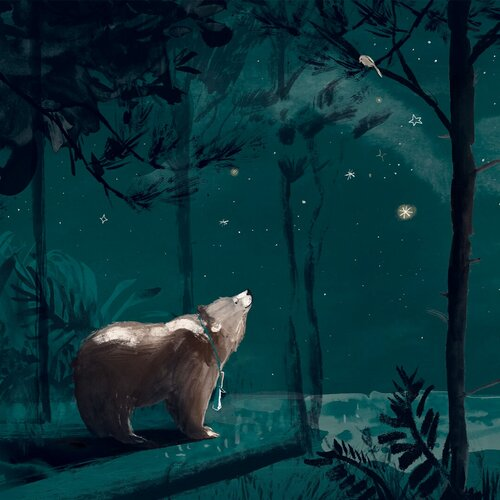 The Bear and her Book night time - Story Snug