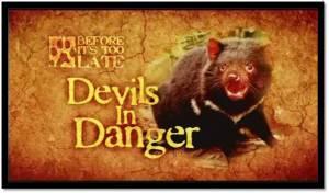DevilsInDanger