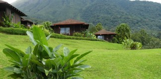 From buying a home to creating a business plan, here's how you can live and do business in Costa Rica and create your pura vida in paradise. Click through to read now...