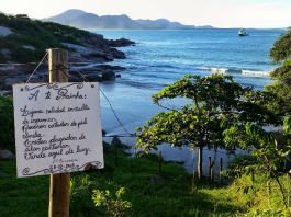 Prainha da Barra - Things to do in Lagoa da Conceicão, Florianópolis