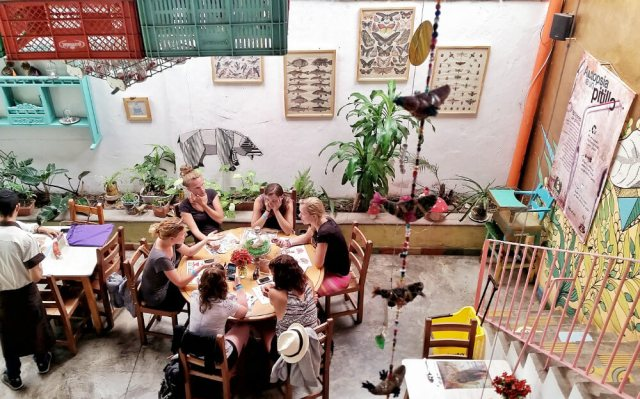 Vegetarian Cafe in Medellin | 10 Solid Reasons To Visit Medellin, Colombia Next
